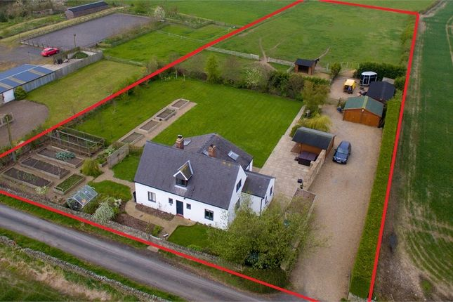 Thumbnail Detached house for sale in East Woodfoot Cottage, Slaley