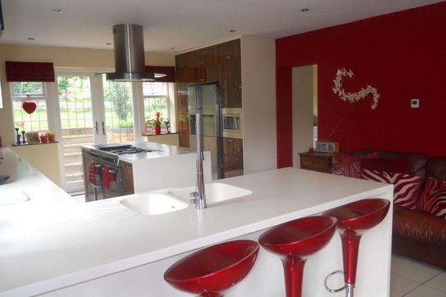 Thumbnail Semi-detached house for sale in Martens Avenue, Bexleyheath