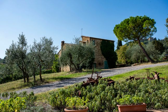 Thumbnail Country house for sale in Montalcino, Montalcino, Siena, Tuscany, Italy