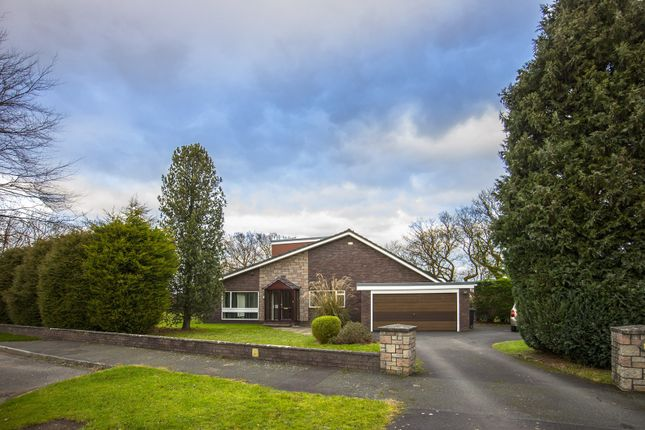 Thumbnail Property for sale in Field House Close, Hepscott, Morpeth