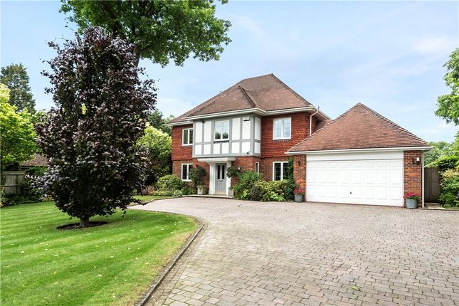 Thumbnail Detached house for sale in Verran Road, Camberley, Surrey