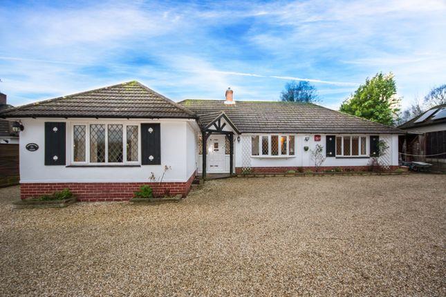 Thumbnail Detached bungalow for sale in Catherington Lane, Catherington