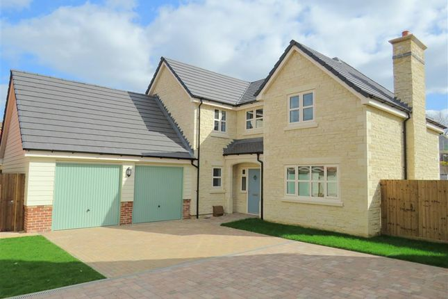 Thumbnail Detached house for sale in Wootton Close, Deeping St. James, Peterborough