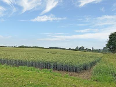 Main Photo of Agricultural Land For Sale, Fusse Road, Screveton, Nottinghamshire NG13