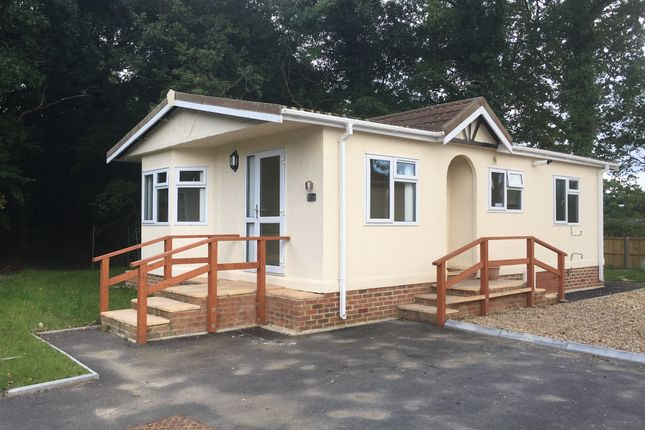Thumbnail Bungalow to rent in Woodlands View, Emms Lane, Brooks Green