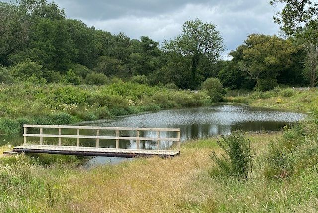 Thumbnail Land for sale in Brongest, Newcastle Emlyn