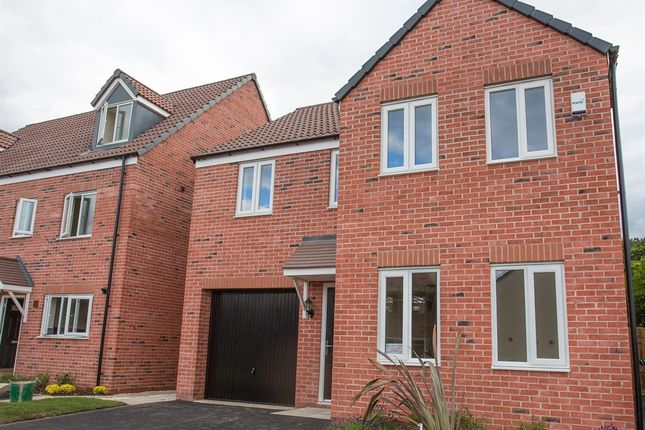 """Thumbnail Detached house for sale in """"The Kendal """" at Stopping Hey, Parsonage Road, Blackburn"""