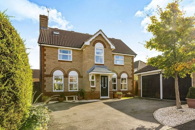 Thumbnail Detached house to rent in Long Burn Drive, Chester Le Street