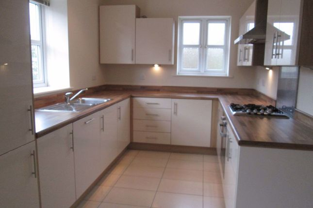 Thumbnail 3 bed property to rent in Parliament Ct, Derby