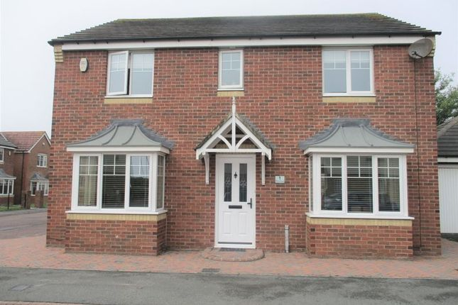 Thumbnail Detached house to rent in Otus Grove, Blyth