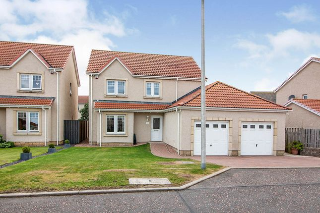 Thumbnail Detached house for sale in Dunlin Walk, Montrose, Angus