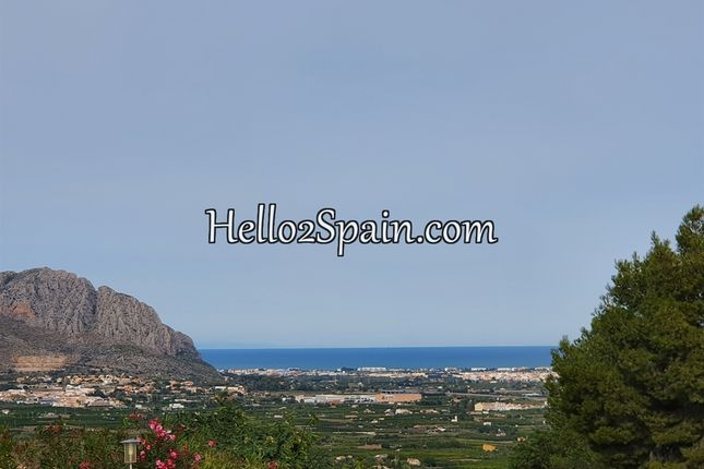Thumbnail Land for sale in Pedreguer, Alicante, Spain