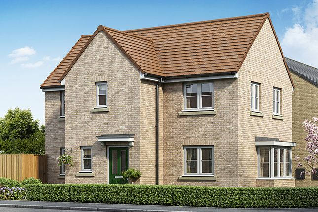 """Thumbnail Property for sale in """"Windsor"""" at Grange Road, Hull"""