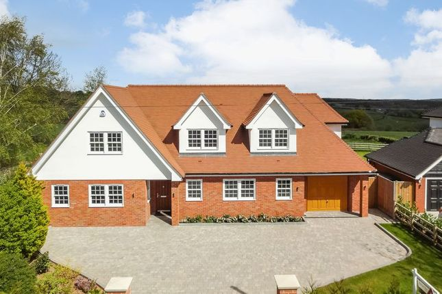 Thumbnail Detached house for sale in Much Birch, Hereford