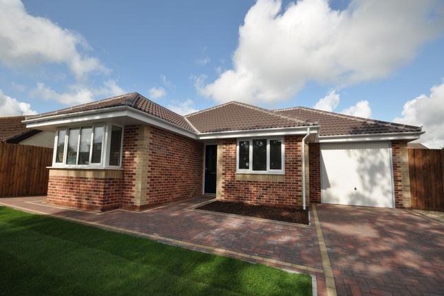 Thumbnail Detached bungalow for sale in Dairy Meadow Gardens, Walton-On-The-Naze