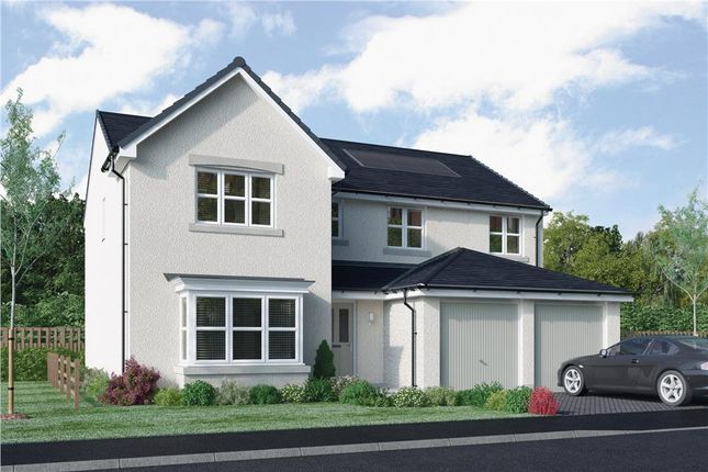 "Thumbnail Detached house for sale in ""Rossie"" at East Calder, Livingston"