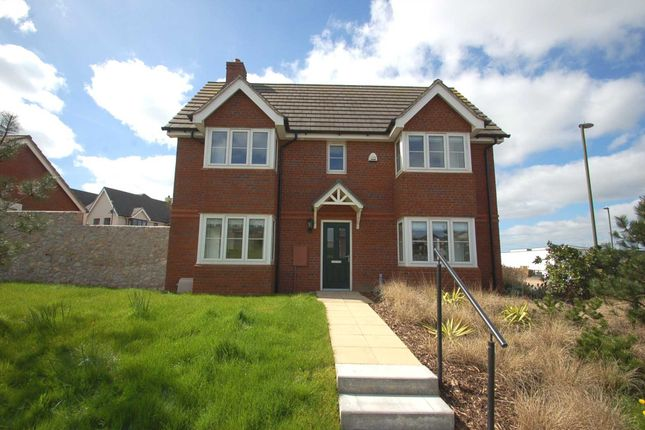 Thumbnail End terrace house to rent in Mimosa Way, Paignton