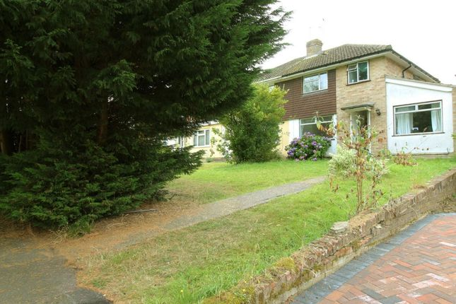 Thumbnail Semi-detached house to rent in Burgess Close, Woodley, Reading