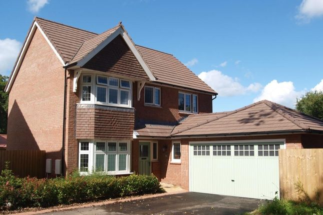 Thumbnail Detached house for sale in Butts Road, Ottery St. Mary