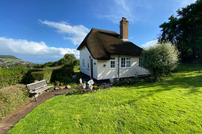 Thumbnail Detached house to rent in Boughmore Road, Sidmouth
