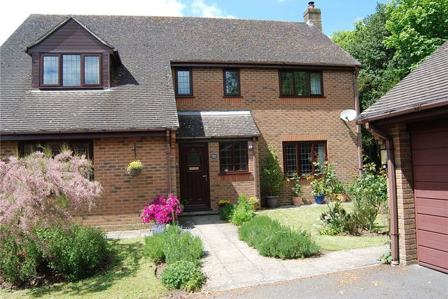 Thumbnail Detached house for sale in Old Oak Way, Winterborne Whitechurch, Blandford Forum