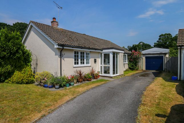 Thumbnail Detached bungalow for sale in Kiln Close, Bovey Tracey, Newton Abbot
