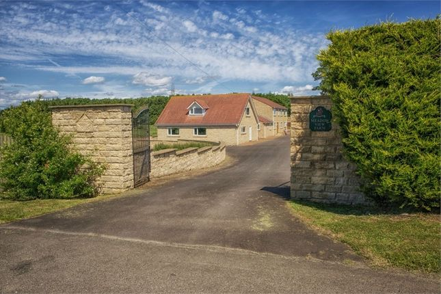Thumbnail Detached house for sale in Choppington, Choppington, Northumberland