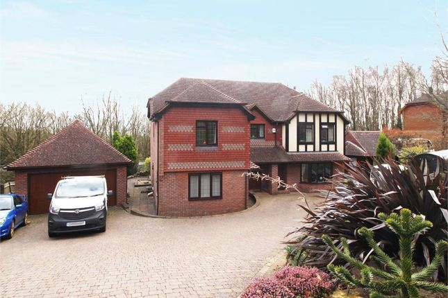 Thumbnail Detached house for sale in St Kitts Close, St Leonards-On-Sea, East Sussex