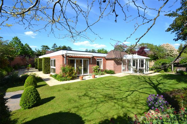 Thumbnail Detached bungalow for sale in Battlemead Close, Maidenhead, Berkshire