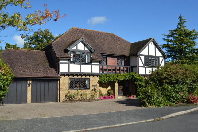 Thumbnail Detached house for sale in Ryders, Langton Green, Tunbridge Wells