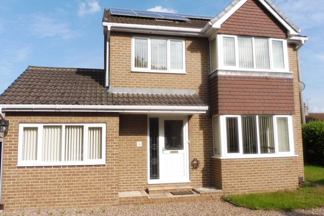 Thumbnail Detached house to rent in Hall Close, Brampton Bierlow