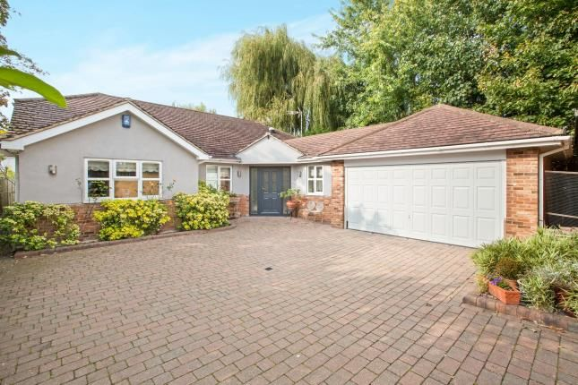 Thumbnail Bungalow for sale in Tye Common Road, Billericay