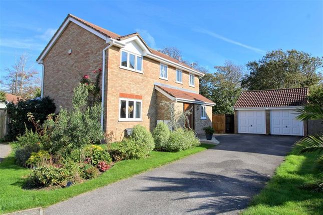 Thumbnail Detached house for sale in Sandore Road, Seaford, East Sussex