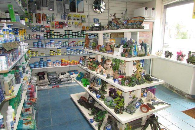 Thumbnail Retail premises for sale in Langcliffe Road, Ribbleton, Preston
