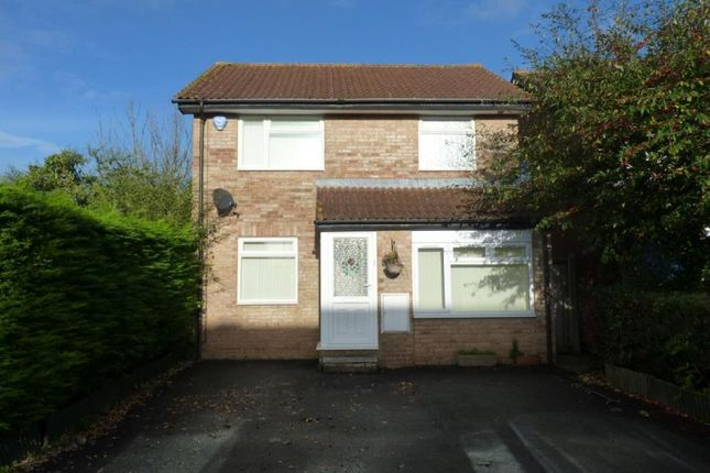 Thumbnail Detached house to rent in Heather Close, Taunton, Somerset