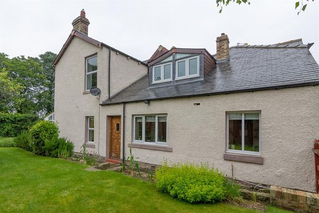 Thumbnail Semi-detached house for sale in Woodland Road, Consett