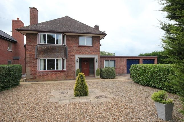 Thumbnail Detached house for sale in Lynn Road, Ely