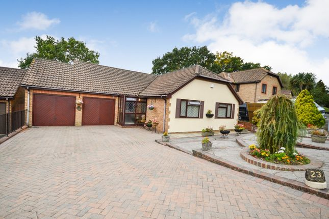 Thumbnail Detached bungalow for sale in Fairfield Chase, Bexhill On Sea
