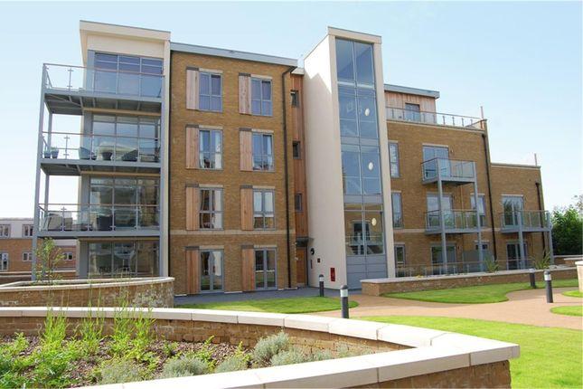 Thumbnail Flat to rent in Blagrove Road, Teddington