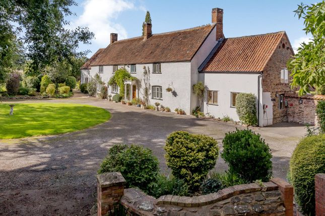 Thumbnail Detached house for sale in Langaller, Taunton, Somerset