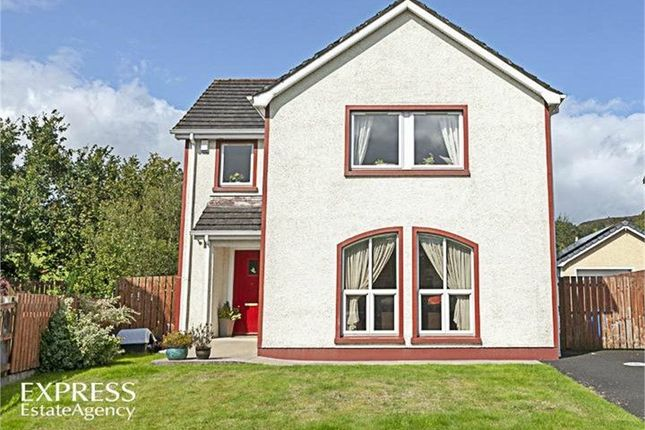 Thumbnail Property for sale in Bushfield Mill, Park, Londonderry