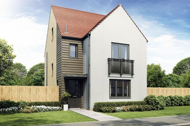 "Thumbnail Detached house for sale in ""The Polwarth"" at Roseden Way, Newcastle Upon Tyne"