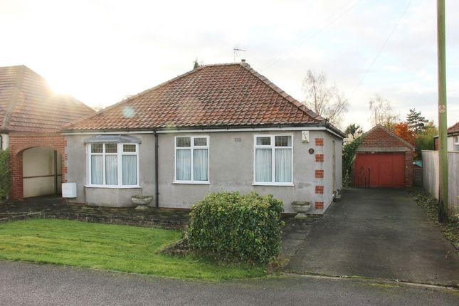 Thumbnail Detached bungalow to rent in Willow Grove, Earswick, York
