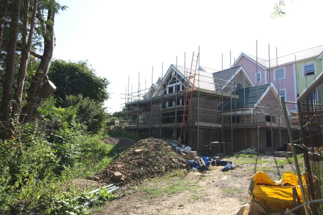 Thumbnail Detached house for sale in Wreath Green, Tatworth, Chard