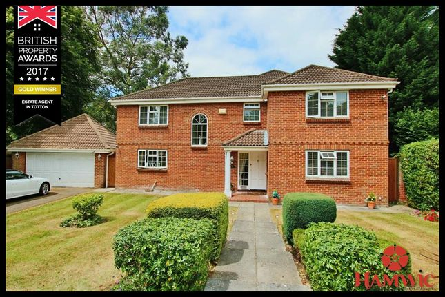 Thumbnail Detached house for sale in Pinewood, Southampton