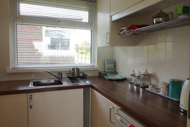 Modern Kitchen of Norton Park, Norton, Dartmouth TQ6
