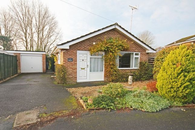 Thumbnail Bungalow for sale in Merton Close, Fordingbridge