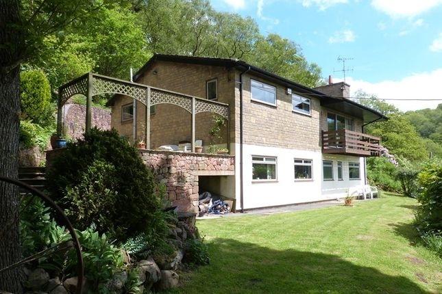 Thumbnail Detached house for sale in Leek Road, Rushton, Cheshire