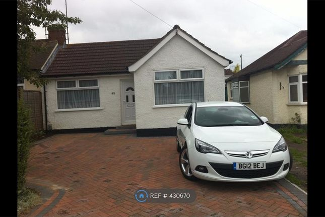 Thumbnail Bungalow to rent in Icknield Way, Luton