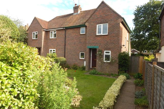 Thumbnail Semi-detached house to rent in The Drive, Cranleigh